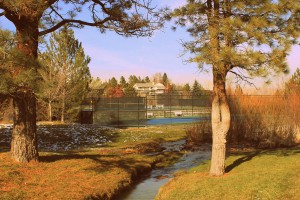 Caughlin Ranch Real Estate Listings and Neighborhood information