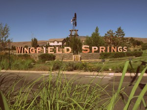 Sparks Wingfield Springs Homes for Sale